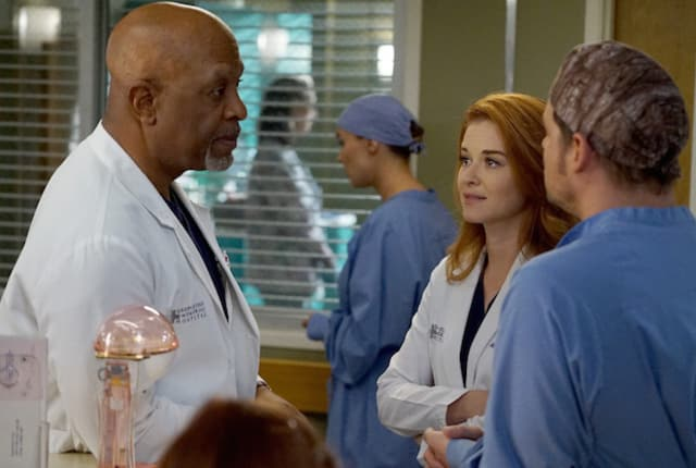 Watch Greys Anatomy Online Season 13 Episode 14 Tv Fanatic