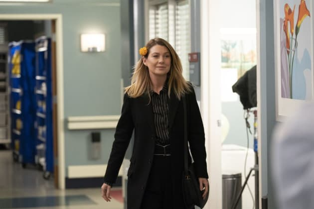 Remembering Loved Ones - Tall - Grey's Anatomy Season 15 Episode 6