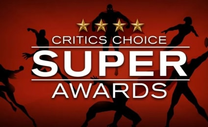Critics Choice Super Awards Winners: The Boys, Palm Springs Win Big