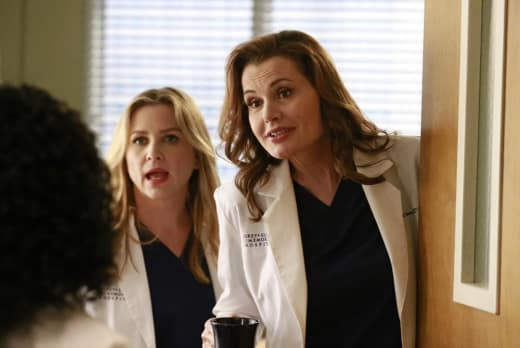 Herman and Arizona - Grey's Anatomy Season 11 Episode 8