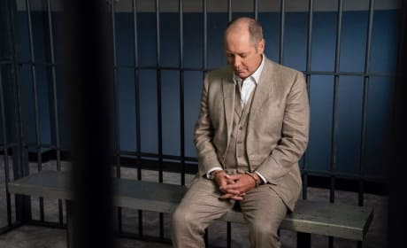 "The Blacklist Photos from ""Dr. Hans Koehler"" and ""The Corsican"""