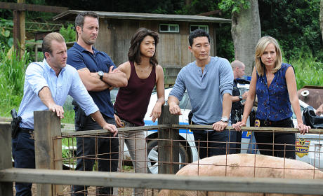 Back to School - Hawaii Five-0