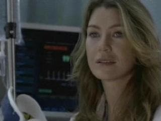 Meredith Muses