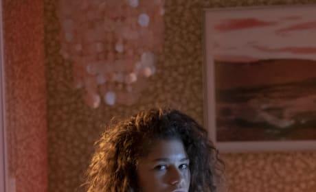 Zendaya Plays Rue - Euphoria