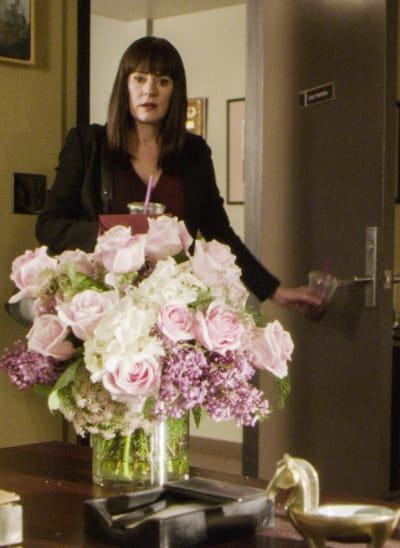 Special Delivery - Criminal Minds Season 15 Episode 7