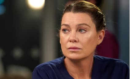 Grey's Anatomy Could Be Ending This Season, According to Ellen Pompeo