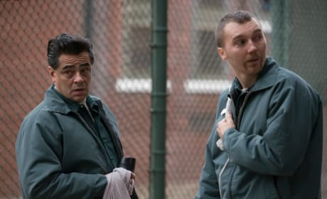 Benecio del Toro and Paul Dano Escape at Dannemora