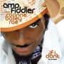 Amp fiddler if i dont