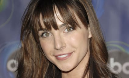 Lisa Sheridan Dies: Halt And Catch Fire Actress Was 44