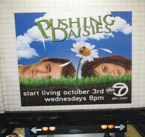 Pushing Daisies Ad