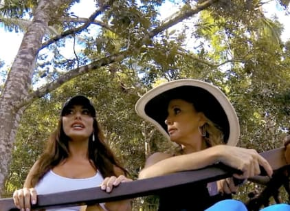 Watch The Real Housewives of Orange County Season 9 Episode 17 Online