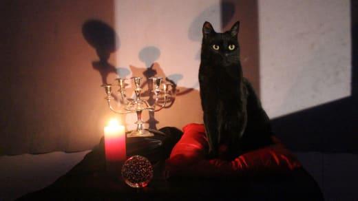 Salem on Sabrina