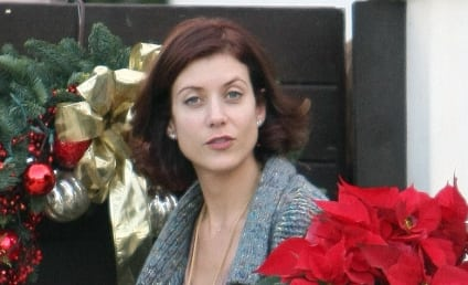 Kate Walsh: Poinsettia Pretty