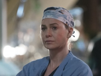 Grey's Anatomy Season 13 Episode 24