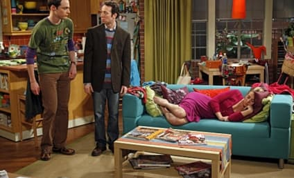 The Big Bang Theory Spoilers: Stuart Will Return