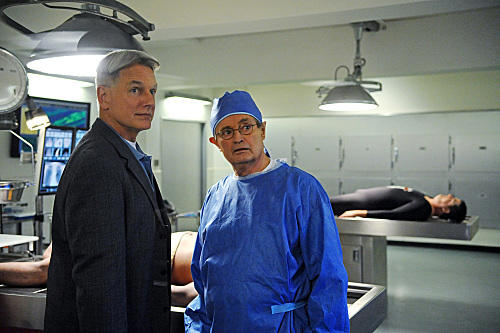 Gibbs and Duck