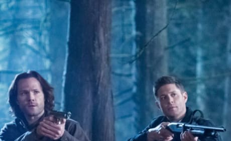 Hunting Time - Supernatural Season 14 Episode 16