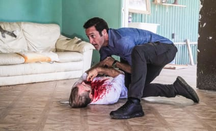 Hawaii Five-0 Season 10 Episode 22 Review: Aloha