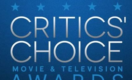 25th Annual Critic's Choice Awards Nominations Announced - Netflix Leads with 61!!