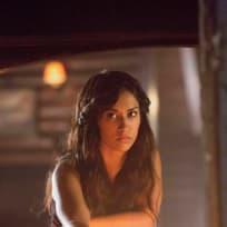 Janina Gavankar on The Vampire Diaries