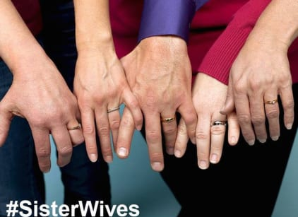 Watch Sister Wives Season 5 Episode 14 Online