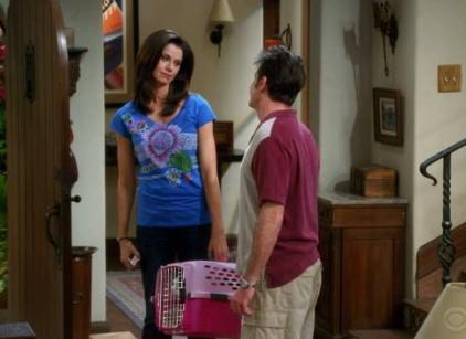 Watch Two and a Half Men Season 7 Episode 16 Online