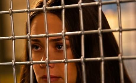 Liz Wants to Know - The Blacklist Season 6 Episode 5