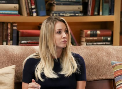 Watch The Big Bang Theory Season 10 Episode 14 Online