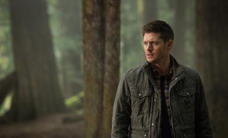 Dean - Supernatural Season 10 Episode 19