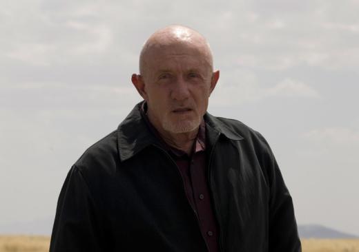 Jonathan Banks as Mike