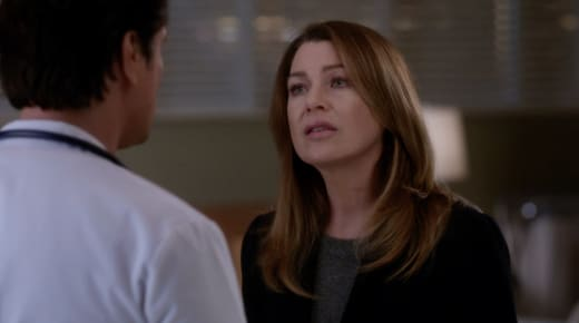 nathan and mer greys