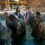 Skinless Dipping - Fear the Walking Dead Season 4 Episode 4