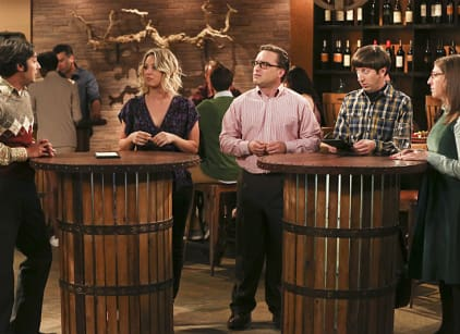 Watch The Big Bang Theory Season 9 Episode 22 Online