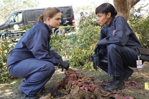 The Rat Eaten Corpse - Bones Season 12 Episode 4