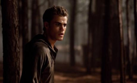 Stefan in the Woods