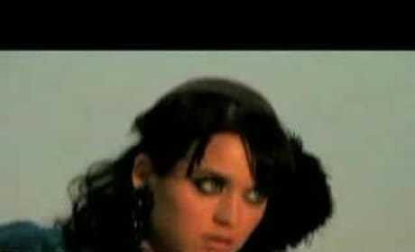 Katy Perry, Guest Star