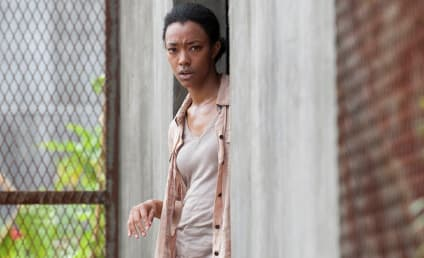 The Walking Dead Review: Whatever It Takes