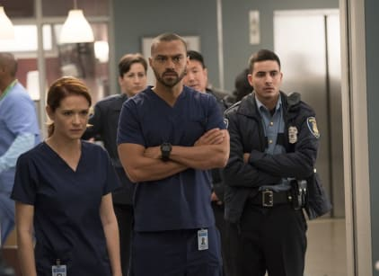 Watch Grey's Anatomy Season 14 Episode 10 Online