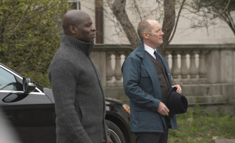 Red and Dembe Wait