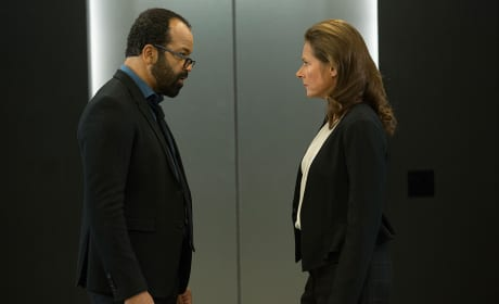 Critical Mistakes - Westworld