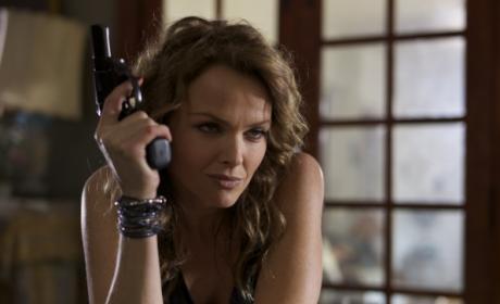 Dina Meyer on CSI