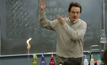 23 TV Teachers We Wish We'd Had (and Some We Didn't)