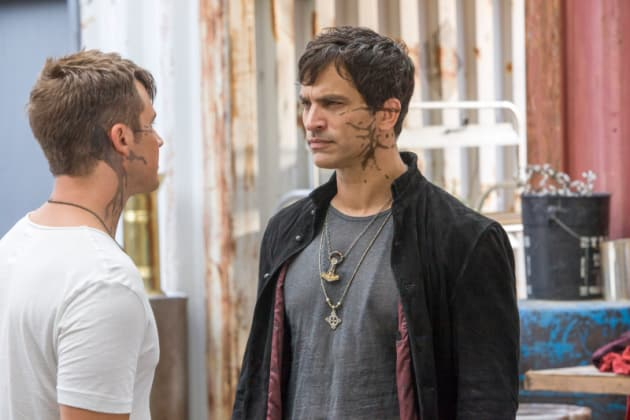 Roman and Castor Talk