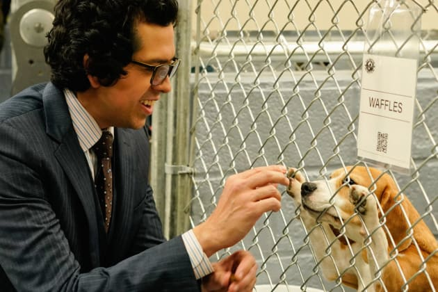 Puppy Love - Madam Secretary Season 4 Episode 16