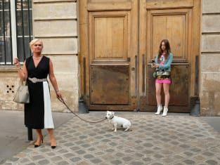 Dog Poop - Emily in Paris