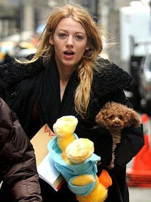 Blake and Furry Friends
