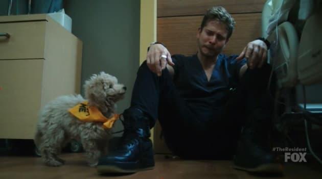 Furry Friend Comforts Conrad