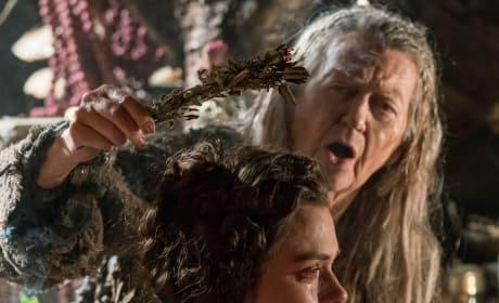 Vikings Season 5 Episode 18: