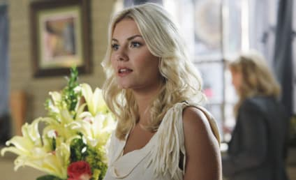 "Elisha Cuthbert to Play Lesbian Lead in ""One Big Happy"" Pilot"