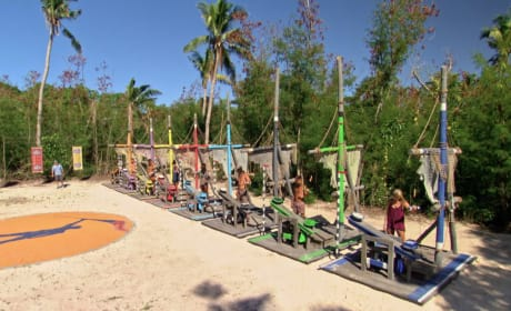 A Difficult Immunity Challenge - Survivor